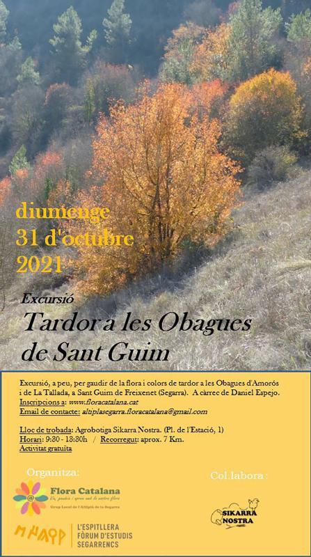 cartell Excursió 'Tardor a les obagues de Sant Guim de Freixenet'
